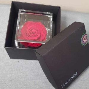 Rosa stabilizzata profumata