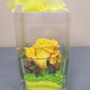 rosa-stabilizzata-vetro-giallo