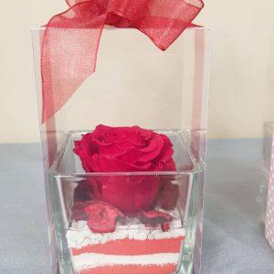 rosa-stabilizzata-vetro-rossa